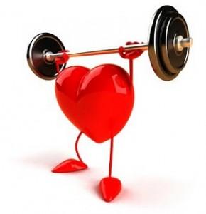e9244-healthy_heart-290x300