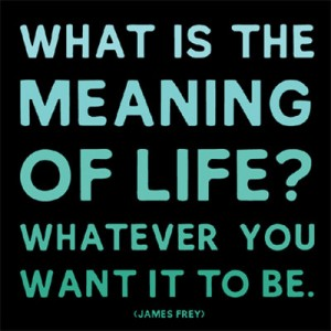 meaning-of-life-300x300