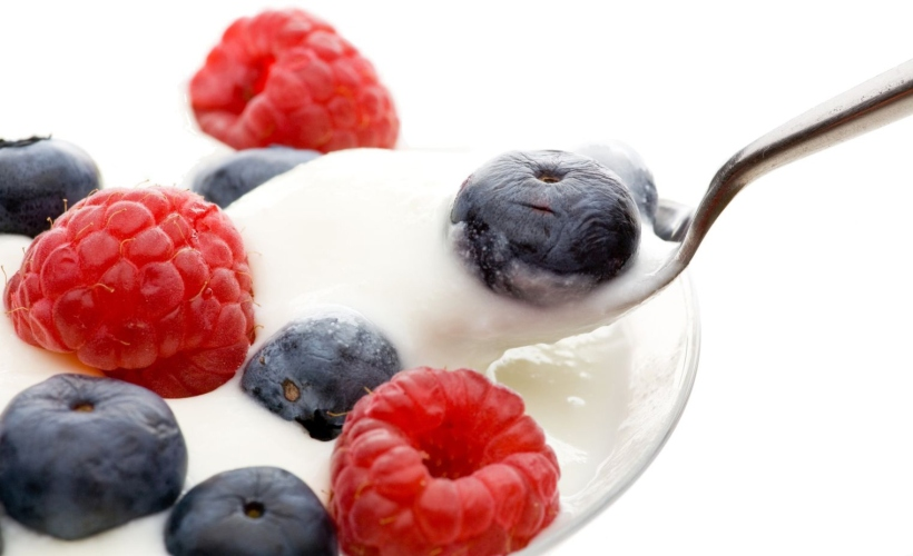 probiotics yogurt