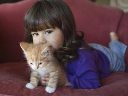 child & cat