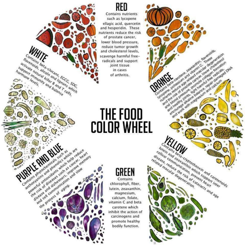 2014-09-26-4-nutrition-rules-that-generally-work-for-everyone-food-wheel