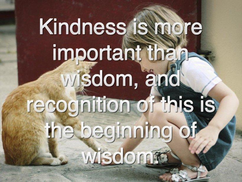 kindness_wisdom