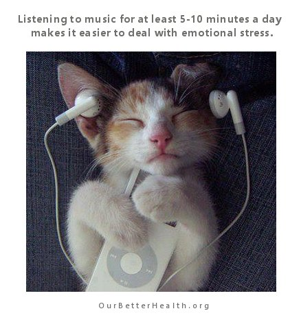 cat-listening-to-music